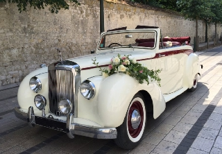 Alvis TA 21 Tickford 1952 ivoire/bordeaux