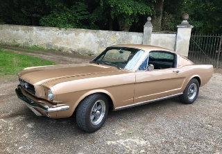 Ford Mustang fastback 1965 Or