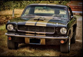 Ford Mustang V8 1966 Noir Or